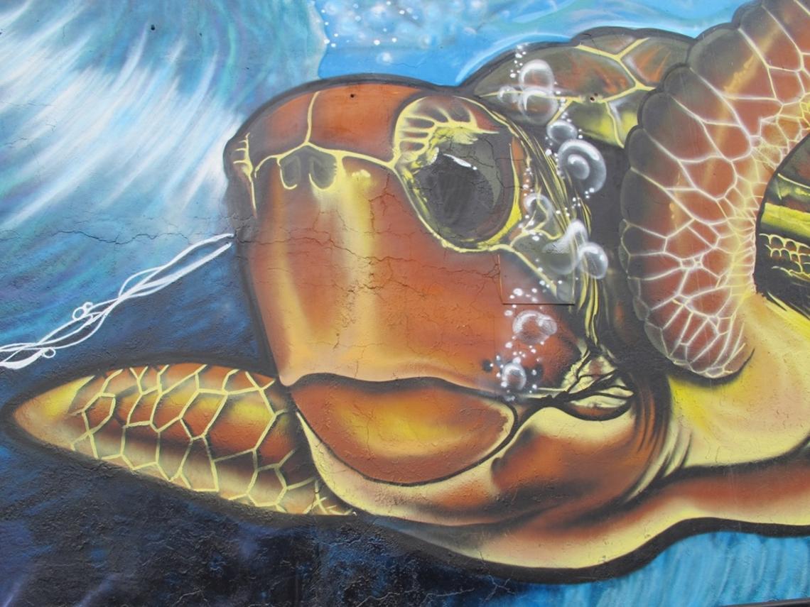 Tag marin sur les murs de Nouméa