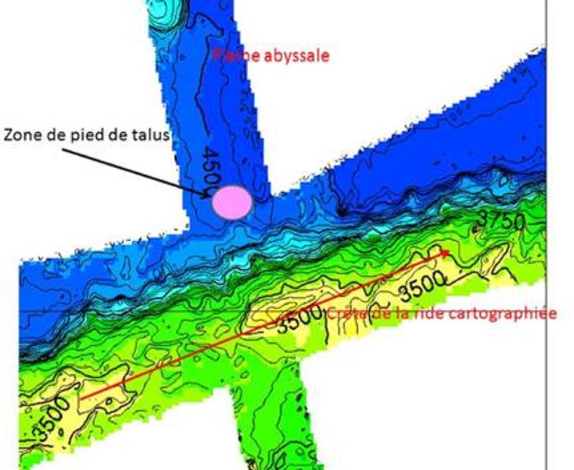 Illustration des données acquises le long de la ride : les zones de crête et de base de la ride, se distinguant de la plaine abyssale sont favorables au repérage de pied de talus.