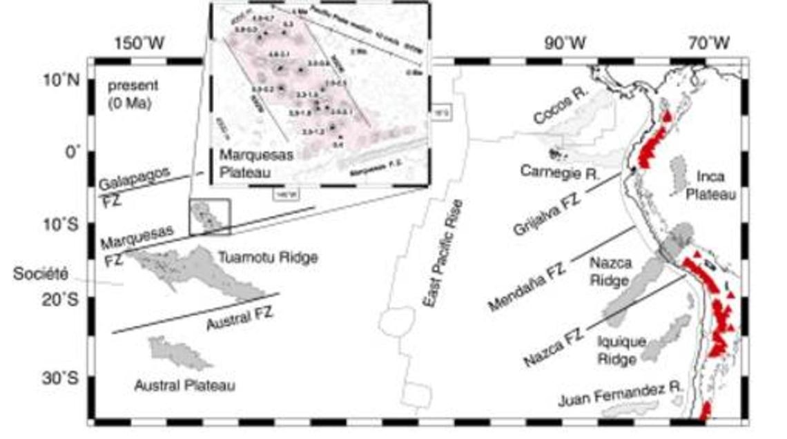 Plateaux des Marquises, des Tuamotu et des Australes et leurs conjugués vis-à-vis de la dorsale Est Pacifique