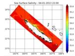 Emprise du modèle Kana, salinité de surface simulée le 4 jan. 2013