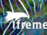 Logo du centre Ifremer du Pacifique